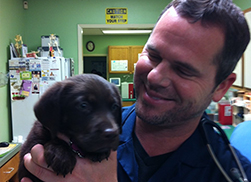 doctor with a black puppy